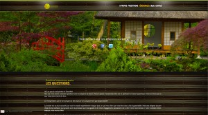 site-Laurence-delinot-Hypnose-5